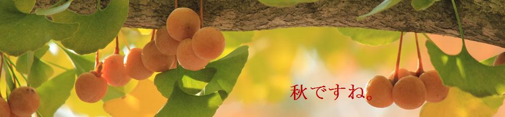http://minnano-kyukaku.com/?p=382